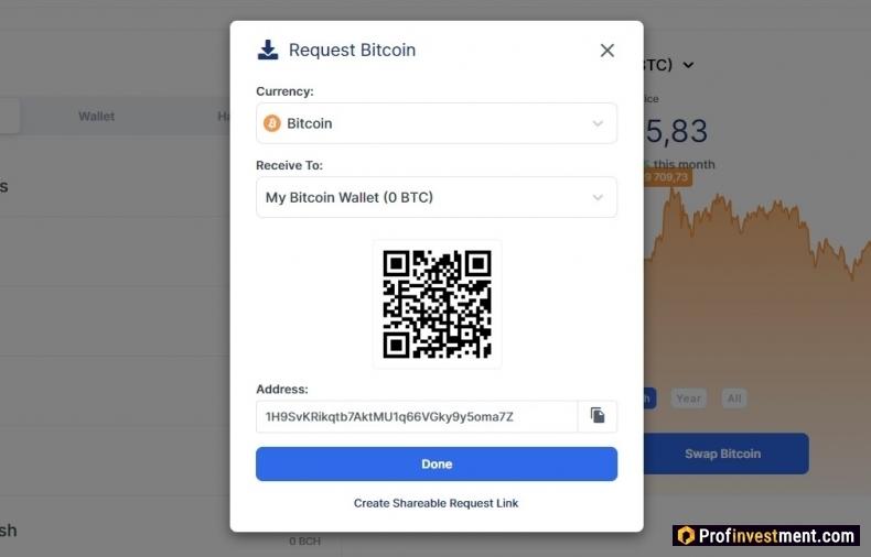 adresa bitcoin vs wallet)