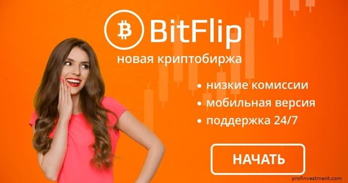 bitflip