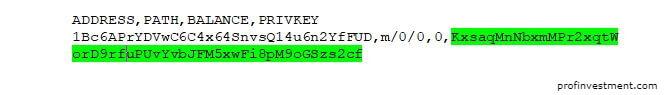 приватный ключ биткоин privkey